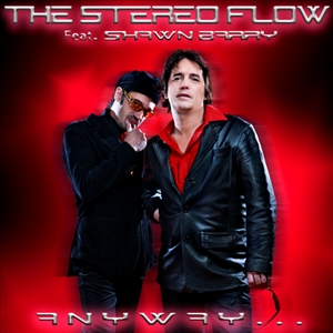 TheStereoFlow